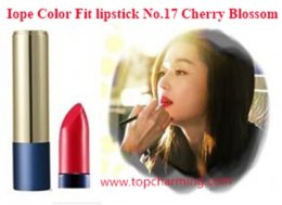 Iope Color Fit Lipstick 17 Cherry Blossom27,000 Won