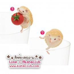 (พร้อมส่งเบอร์ 3,7) ตุ๊กตาเกาะแก้วน้องเม่น PUTITTO Hedgehog (ความสูงประมาณ 3-3.5 cm)