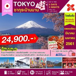 ทัวร์ญี่ปุ่น : ซากุระบ๊านบาน