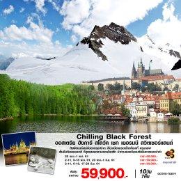 ทัวร์ยุโรป : Chilling Black Forest