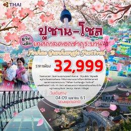 ทัวร์เกาหลี : ชมเทศกาลดอกซากุระบาน Jinhae Gunhangje Festival-B