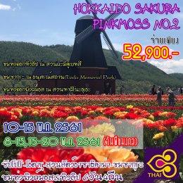 ทัวร์ญี่ปุ่น : ชมทุ่งดอกพิงค์มอสและดอกซากุระกว่า8,000ต้นที่ฮอกไกโด!(No.2)