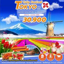 ทัวร์ญี่ปุ่น : ชมเทศกาลดอกทิวลิป ณ เมือง ซากุระ (โตเกียว)