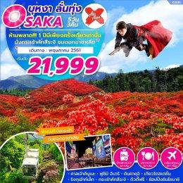 ทัวร์ญี่ปุ่น : OSAKA นั่งกระเช้าชมดอกอาซาเลีย