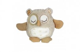 Nighty Night Owl - on the Go
