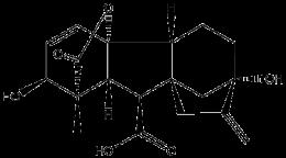 Gibberellic Acid Solution (13 mg/mL)