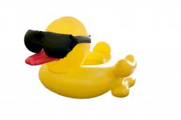 Yellow duck S (with net)