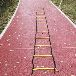 Speed ladder