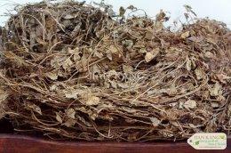 หญ้าหอม (หญ้าหอมมังกร) หรือ หญ้าจีน อบแห้ง (Chamomile Leaves) คัดสรรคุณภาพ ใหม่ หอม