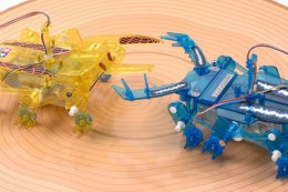 Insect Battle Set – 2-Channel Remote Control