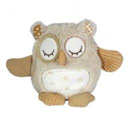 Nighty Night Owl on the Go นกฮูกกล่อมนอน