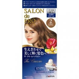 DARIYA SALON DE PRO THE CREAM HAIR COLOR #2 [BRIGHTEST BROWN]