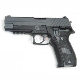 We P226 MK25
