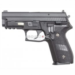 We F229 (Sig P229)