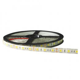 LED Ribbon 5050 12V 5m.