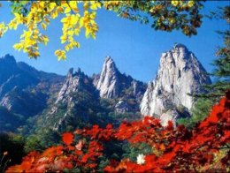 เกาหลี Beautiful Korea 5D 3N (BG)
