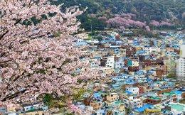Happy Trendy Busan 5D3N บินโคเรียนแอร์(KE)