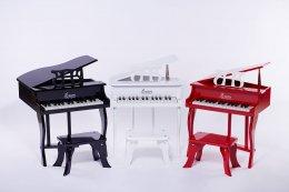 LOUVE Mini Piano 30 keys - Fancy piano