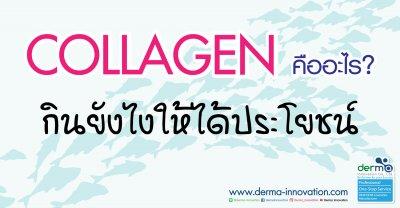Collagen คืออะไร? กินยังไงให้ได้ประโยชน์