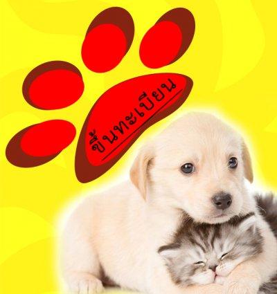 ผลการขึ้นทะเบียนสุนัขและแมวออนไลน์ อัพเดท 5/4/2561